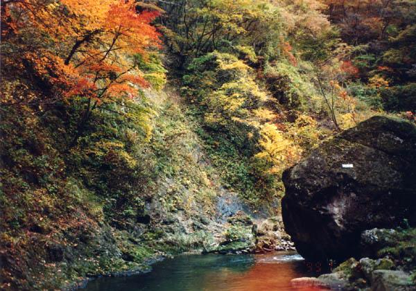 紅葉の鳴子峡