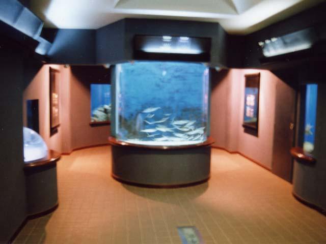 玉野海洋博物館