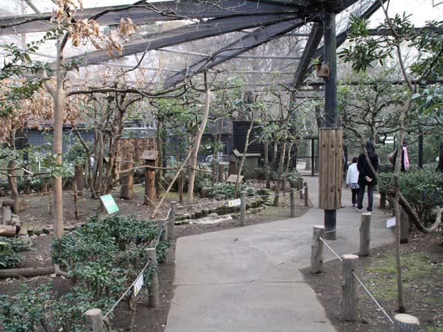 井の頭自然文化園「リスの小径」