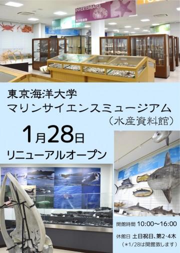 東京海洋大学マリンサイエンスミュージアム(東京海洋大学海洋科学部附属水産資料館)