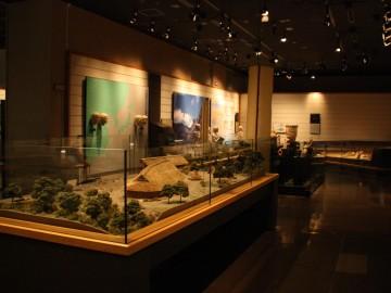 国立歴史民俗博物館第1展示室
