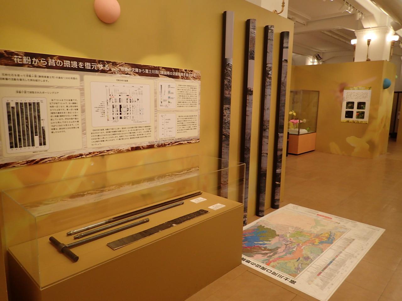 国立科学博物館「花粉と花粉症の科学」展