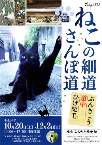 文京ふるさと歴史館「ねこの細道・さんぽ道」展